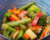 Closeup of healthy steamed vegetables Royalty Free Stock Photo