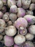 Turnips at the market royalty free stock photos
