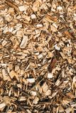 Wood chips up close royalty free stock image