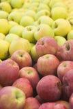 Closeup heap sweet fresh ripe apples. Fruit backround. Healthy food. Stock Photography