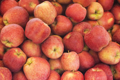 Closeup heap sweet fresh ripe red apples. Fruit backround. Healthy food. Stock Photo