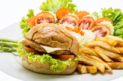 Closeup of home made chicken burgers on plate (Selective Focus). Stock Image