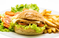 Closeup of home made chicken burgers on plate (Selective Focus). Royalty Free Stock Photography