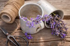 Closeup of homegrown lavender in a summer garden. On wooden table royalty free stock photos