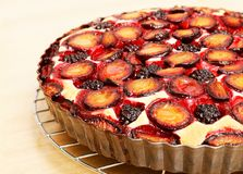 Homemade berry pie with plums and blackberry. Closeup homemade berry pie with plums and blackberry on wooden table. Shallow focus royalty free stock photo