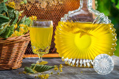 Closeup of homemade liqueur with lime and honey Stock Images