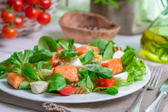 Closeup of homemade salad with salmon and vegetables Royalty Free Stock Images