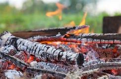 Closeup of hot burning firewood Royalty Free Stock Image