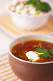 Closeup hot red borscht decorated Stock Image