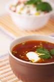 Closeup hot red borscht decorated Stock Image