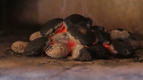 Closeup of hot wood briquette stock video