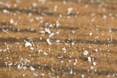 Closeup of house dust. Macro closeup shot of house dust Royalty Free Stock Photos