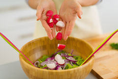 Closeup on housewife adding radishes into salad Stock Photos