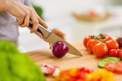 Closeup on housewife cutting red onion Royalty Free Stock Images