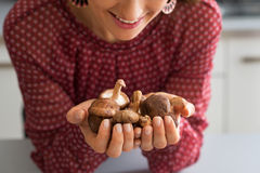 Closeup on housewife holding shiitake mushrooms Stock Photos