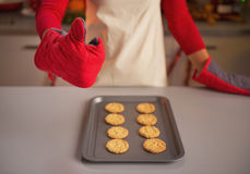 Closeup on housewife in kitchen gloves showing christmas cookies Stock Photos