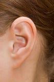Closeup of a human ear. Close up photo of a human ear royalty free stock photos