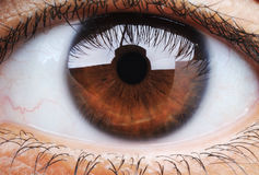 Closeup of human eye Royalty Free Stock Image
