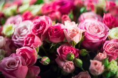 Closeup image of beautiful bouquet with amazing pink and white roses stock image