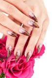 Closeup image of beautiful nails Royalty Free Stock Image