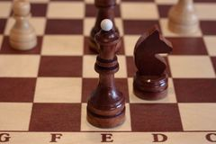 Closeup image of a board game chess on a gray background white and black figures.  Stock Photos