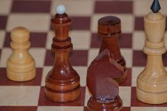 Closeup image of a board game chess on a gray background white and black figures.  Royalty Free Stock Image