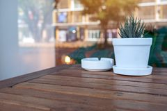 Cactus in a pot and a ashtray on wooden table with blurred background royalty free stock photography