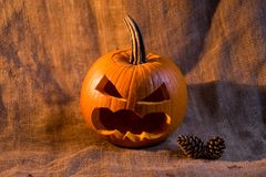 Scary jack-o-lantern and conifer cones close up. Closeup image of carved pumpkin with scary face and two pine cones Halloween concept Royalty Free Stock Photo