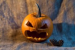 Scary jack-o-lantern and conifer cones close up Royalty Free Stock Images