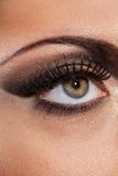 Closeup image of eye with evening makeup Royalty Free Stock Photos