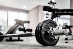 Closeup image of a fitness equipment in gym. Closeup image of dumbbell barbell fitness equipment in gym stock photos