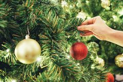 Closeup image of a hand decorating Christmas tree with red sparkling glitter baubles. Concept and idea of celebrating Christmas ho. Lidays with family Stock Photos