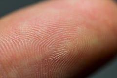 Closeup image of human fingerprint on a index finger as identifi Royalty Free Stock Image