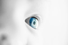 Closeup image of infant eye, selective color Stock Images