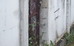 Closeup image of an old white concrete fence wall Royalty Free Stock Images