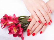 Closeup image of red manicure with flowers Royalty Free Stock Photo