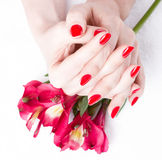 Closeup image of red manicure with flowers Stock Images