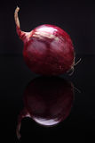Closeup image of red onion on black background with reflection Stock Photo