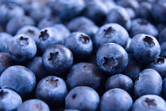 Closeup Image of Ripe Sweet Blueberries Stock Photo