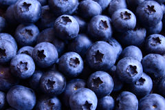 Closeup Image of Ripe Sweet Blueberries Royalty Free Stock Photos