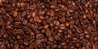 Closeup image of roasted coffee grains Royalty Free Stock Photo
