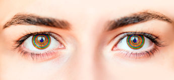 Closeup image of yellow eye Royalty Free Stock Photography