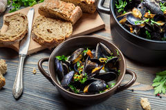 Closeup of ingredients to prepare mussels with garlic Stock Image