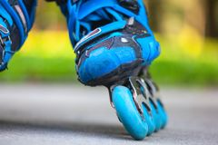 Closeup of inline roller skate blue wheels. Stock Images