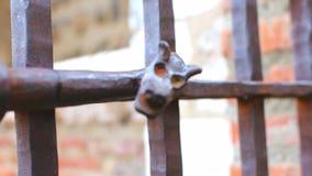 Closeup of an Iron Dragon adorning an iron street gate. Closeup of an Iron Dragon adorning the iron street gate of the Campo Santo Cloister of the Perpignan stock video