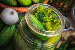 Closeup jar pickles other ingredients pickling Stock Photos