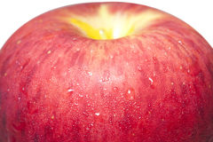 Closeup a juicy apple II Royalty Free Stock Image