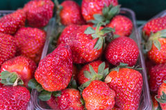 Closeup of juicy, fresh, ecologically produced, red strawberries. Closeup of juicy fresh ecologically produced, red strawberries without nitrates. Captured in Stock Photography