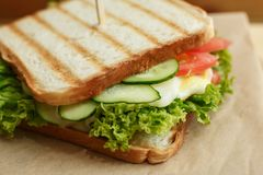 Closeup juicy sandwich with bacon, fresh vegetables, green salad and dark lines after grill.  stock photo