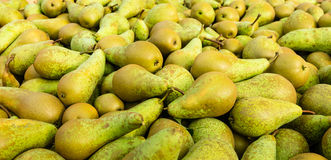 Closeup of just picked pears Stock Photos